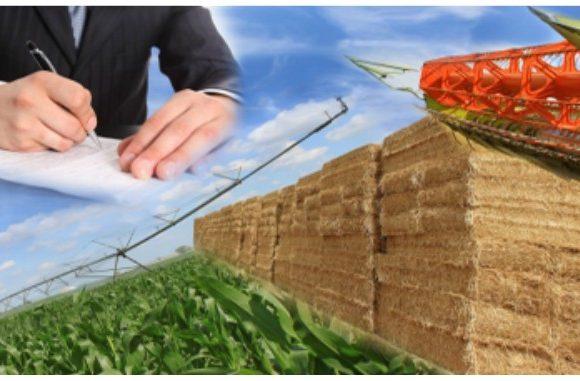 Registrul Agricol